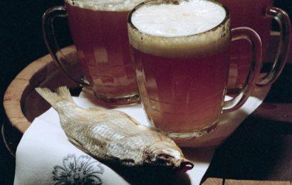 Politika žejnih: Zgodovina ruske Stranke ljubiteljev piva