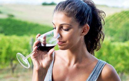 6 vinskih kleti, ki dokazujejo, da Rusija ni samo dežela vodke