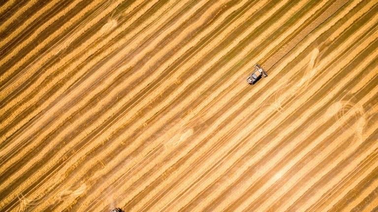 Kitajska ponudila Rusiji možnost, da zasede ameriško mesto na kitajskem trgu kmetijskih izdelkov