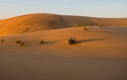 Ste že videli to nenavadno puščavo?