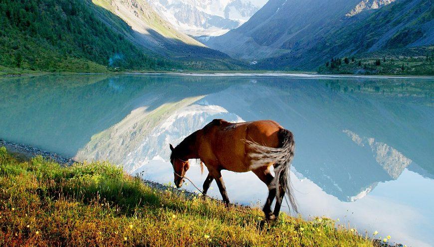 Osem ruskih naravnih čudes, ki so lahko dostopna