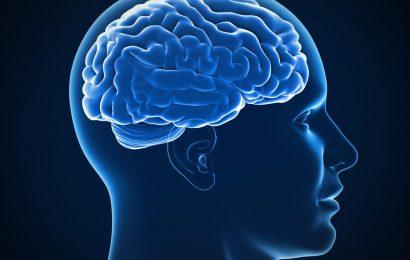Znanstveni predlogi kako izboljšati svoj spomin
