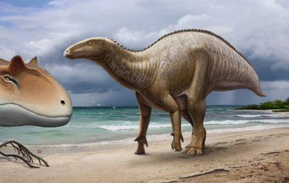 Najbolj nenavadni dinozavri, ki so živeli na ozemlju današnje Rusije