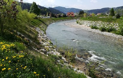 Poročilo o kemijskem stanju površinskih voda v letu 2019